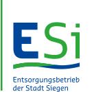 esi-siegen.de